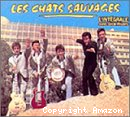 Chats sauvages avec Dick Rivers