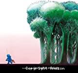 Le chevalier et la forêt